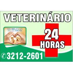 Clinica Veterinária É dos Bichos 24 horas Campinas Av. Brasil