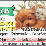 Dog & Cia - Estética  Pet