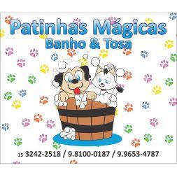 Patinhas Mágicas Banho & Tosa