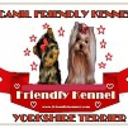 Canil Friendly Kennel Yorkshire